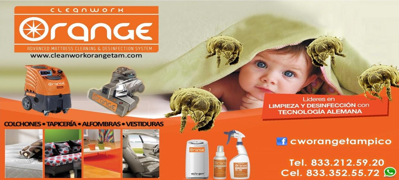 Foto de Cleanwork Orange Tampico
