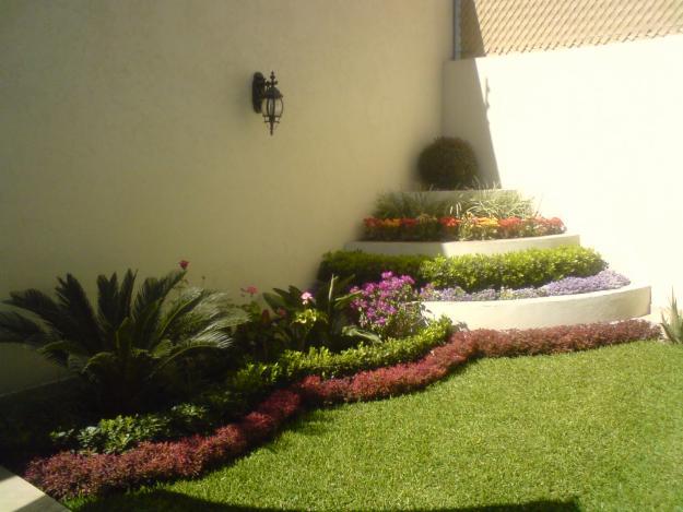 Colibri Jardineria Xochimilco