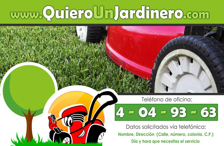 Empresa de jardiner a integral queretaro quer taro for Jardineria queretaro