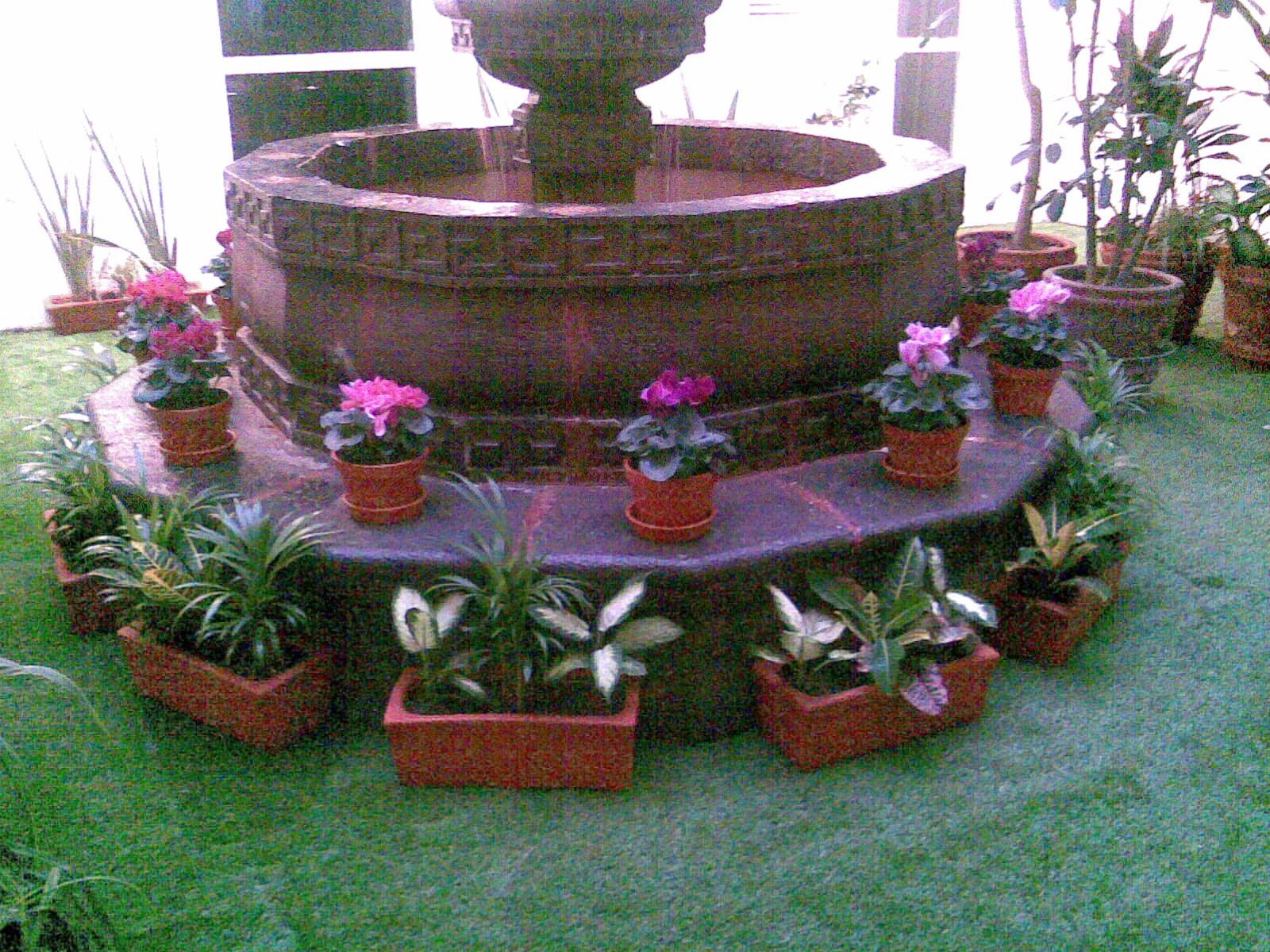 Jardiner a alhel xochimilco for Jardineria xochimilco