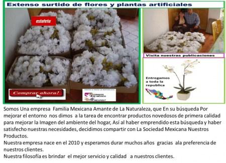 Mi bello jardin plantas artificiales m xico df for Plantas decorativas artificiales df