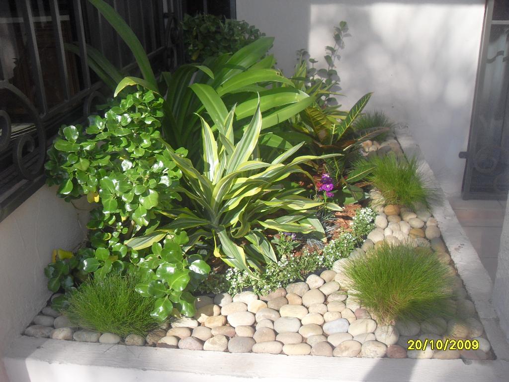 vivero mundo verde tijuana