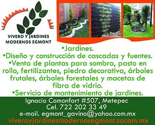 Vivero y jardines modernos egmont metepec m xico for Viveros en toluca